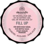 alessandro Fill up Gel, 15 g